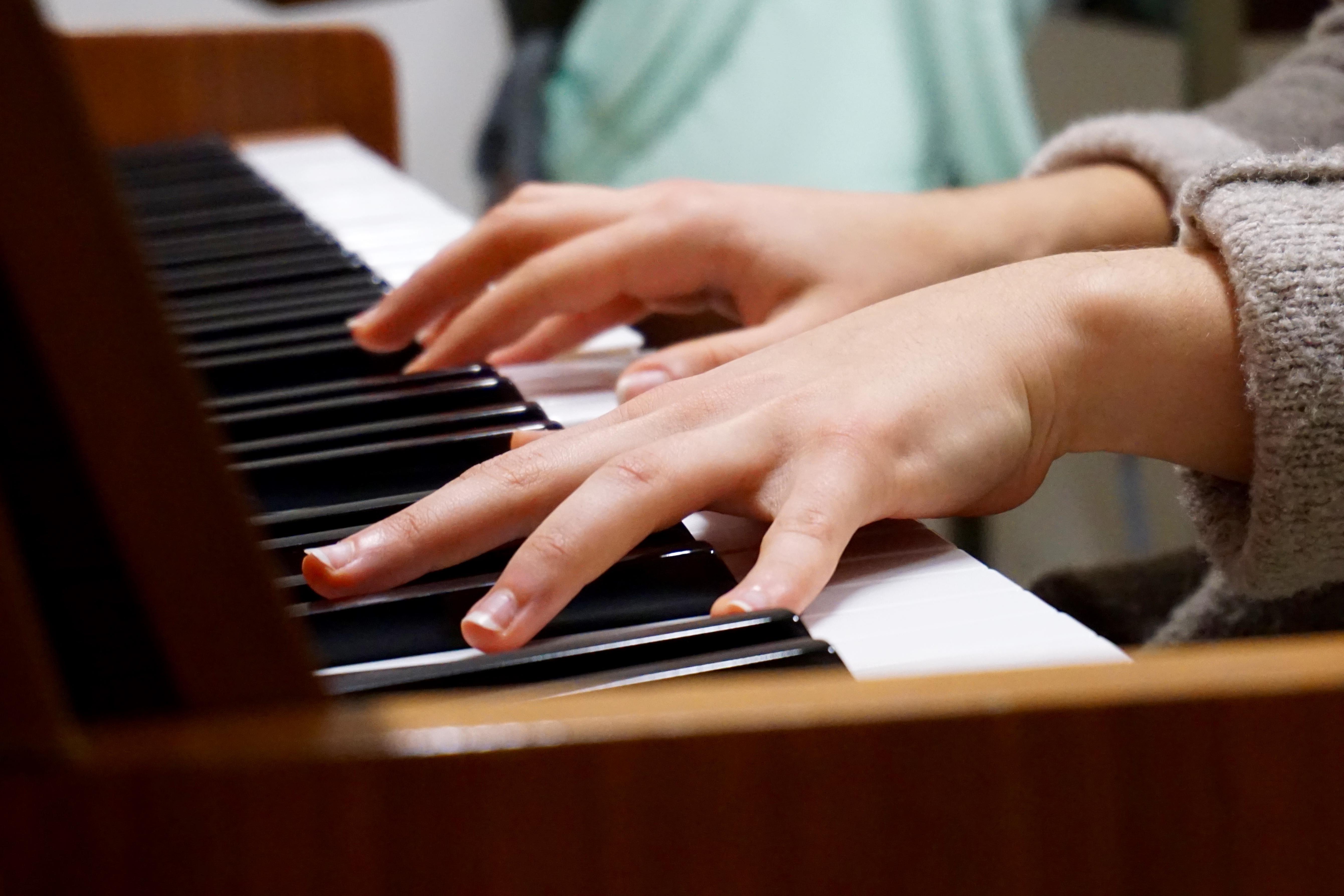 adiestramiento elemental para musicos pdf